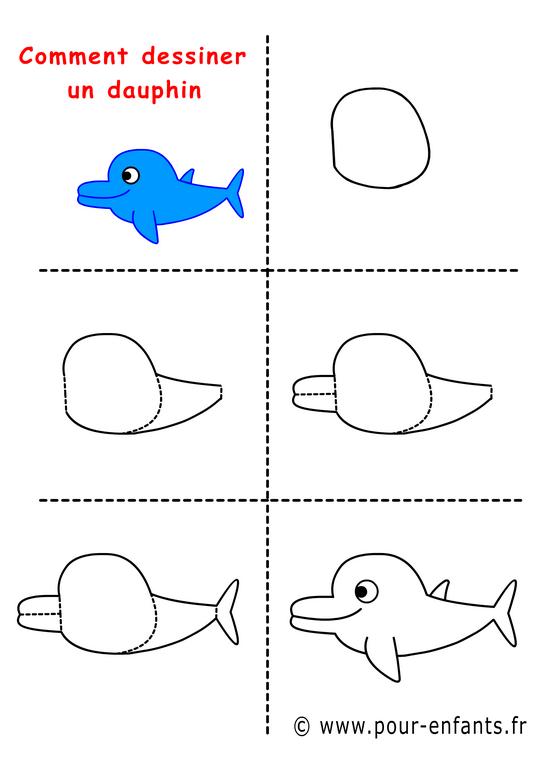 Comment dessiner un dauphin - Dauphin a dessiner ...
